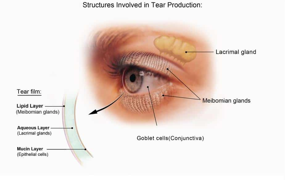 Dry Eyes Liberty Laser Eye Center